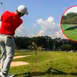 Youtube: animal de tres metros de largo se pasea por un campo de golf