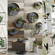 NO TE PIERDAS: Green Home: 5 ideas estilosas para decorar la casa u oficina con plantas
